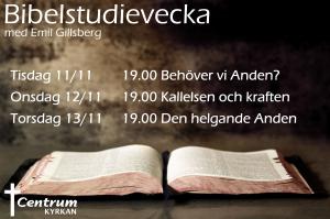 Bibelstudievecka 2014